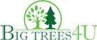 Big Trees 4U Logo